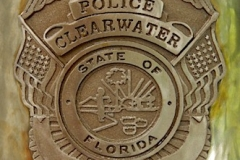 Clearwater Badge